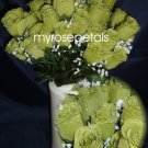 84 Silk Rose Flowers with Raindrops-Wedding Roses Flowers - Lime Green