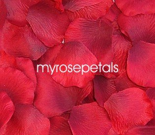 Petals - 1000 Silk Rose Petals Wedding Favors - Solid Colors - Red
