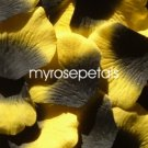 Petals - 1000 Silk Rose Petals Wedding Favors -  Two Tone - Black/Yellow