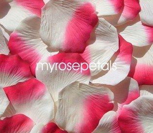 Petals - 1000 Silk Rose Petals Wedding Favors -  Two Tone - Ivory/Hot Pink