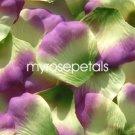 Petals - 1000 Silk Rose Petals Wedding Favors -  Two Tone - Multi Color