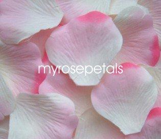 Petals - 1000 Silk Rose Petals Wedding Favors -  Two Tone - White/Pink/Hot Pink