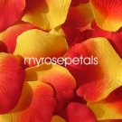 Petals - 1000 Silk Rose Petals Wedding Favors -  Two Tone - Yellow/Red