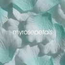 Petals - 200 Silk Rose Petals Wedding Favors -  Two Tone - Aqua/White