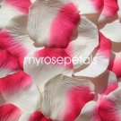 Petals - 200 Silk Rose Petals Wedding Favors -  Two Tone - Ivory/Hot Pink