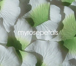Petals - 200 Silk Rose Petals Wedding Favors -  Two Tone - Lime Green/White
