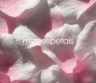 Petals - 200 Silk Rose Petals Wedding Favors -  Two Tone - Pink/White