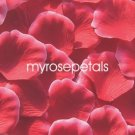 Petals - 200 Silk Rose Petals Wedding Favors -  Two Tone - Red/White