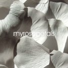 Petals - 200 Silk Rose Petals Wedding Favors -  Two Tone - White/Grey