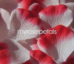 Petals - 200 Silk Rose Petals Wedding Favors -  Two Tone - White/Red