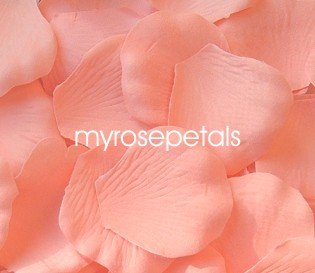 Petals - 200 Silk Rose Petals Wedding Favors - Solid Colors - Apricot