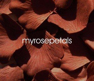 Petals - 200 Silk Rose Petals Wedding Favors - Solid Colors - Brown