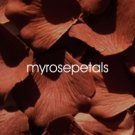Petals - 200 Silk Rose Petals Wedding Favors - Solid Colors - Brown