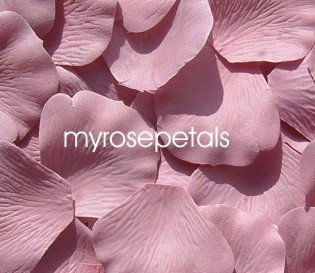 Petals - 200 Silk Rose Petals Wedding Favors - Solid Colors - Dusty Rose