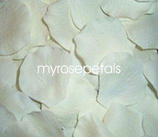 Petals - 200 Silk Rose Petals Wedding Favors - Solid Colors - Ivory