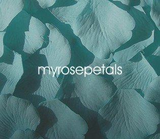 Petals - 200 Silk Rose Petals Wedding Favors - Solid Colors - Turquoise