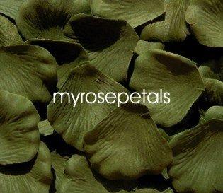Petals - 200 Silk Rose Petals Wedding Favors - Solid Colors - Willow