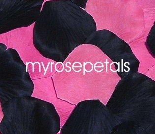 Petals - 200 Wedding Silk Rose Flower Petals Wedding Favors - Black & Hot Pink