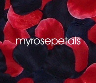 Petals - 200 Wedding Silk Rose Flower Petals Wedding Favors - Black & Red