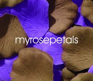 Petals - 200 Wedding Silk Rose Flower Petals Wedding Favors - Brown & Purple