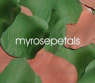 Petals - 200 Wedding Silk Rose Flower Petals Wedding Favors - Peach & Green