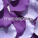 Petals - 200 Wedding Silk Rose Flower Petals Wedding Favors - Purple & Lavender