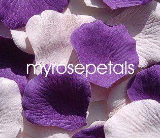 Petals - 200 Wedding Silk Rose Flower Petals Wedding Favors - Purple & Pale Pink