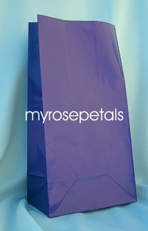 Paper Favor Treat Goody Luau Party Gift Bags - Purple (12 Bags)