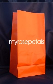 Paper Favor Treat Goody Luau Party Gift Bags - Orange (12 Bags)