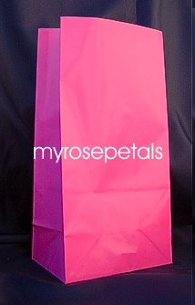 Paper Favor Treat Goody Luau Party Gift Bags - Hot Pink (12 Bags)