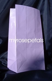 Paper Favor Treat Goody Luau Party Gift Bags - Lavender (12 Bags)