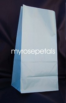 Paper Favor Treat Goody Luau Party Gift Bags - Light Blue (12 Bags)