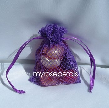 3x4 Mesh Fishnet Wedding Favor Gift Bags/Jewelry Pouches - Purple (10 Bags)