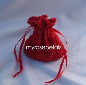 3x4 Sparkle Fabric Wedding Favor Gift Bags/Pouches - Red (10 Bags)