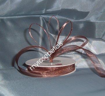 """Sheer Organza Ribbon Mono Edge - 7/8"""" - 25 Yards (75 FT) - Brown"""