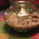 Luminous Seashell Candle