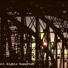 Bridge of Light Photo Print 8x10