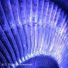 Turbine Blades II Giclee Art Print 12x16