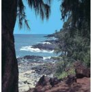 Hawaii Vista Giclee Art Poster 16x20
