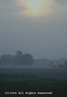 Arkansas Foggy Morning Giclee Art Print 12x16