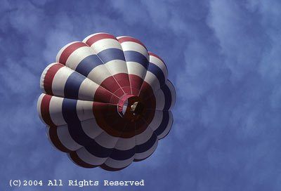 Red White and Blue Balloon Giclee Art Print 12x16