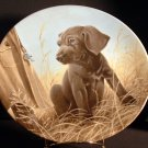 Command Performance / The Weimaraner /  Edwin M. Knowles Collector Plate /1989