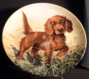 Missing The Point / Irish Setter /  Edwin M. Knowles Collector Plate /1988
