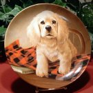 Shirt Tales / The Cocker Spaniel /  Edwin M. Knowles Collector Plate /1988