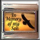 IN MEMORY OF MY SON EAGLE SUNSET ITALIAN CHARM CHARMS