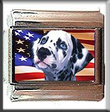 DALMATION AND AM FLAG ITALIAN CHARM CHARMS