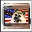 AKITA INU AND AM FLAG ITALIAN CHARM