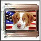 BRITTANY SPANIEL AND AM FLAG ITALIAN CHARM