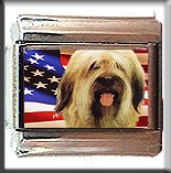 BRIARD AND AM FLAG ITALIAN CHARM