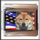 SHIBA INU AND AM FLAG ITALIAN CHARM